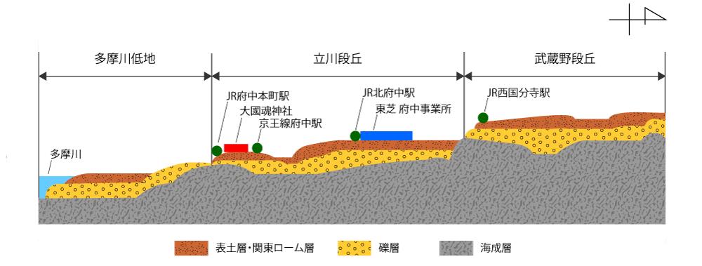 南側は低地、北に進むにつれて標高が高くなる段丘状の府中の土地