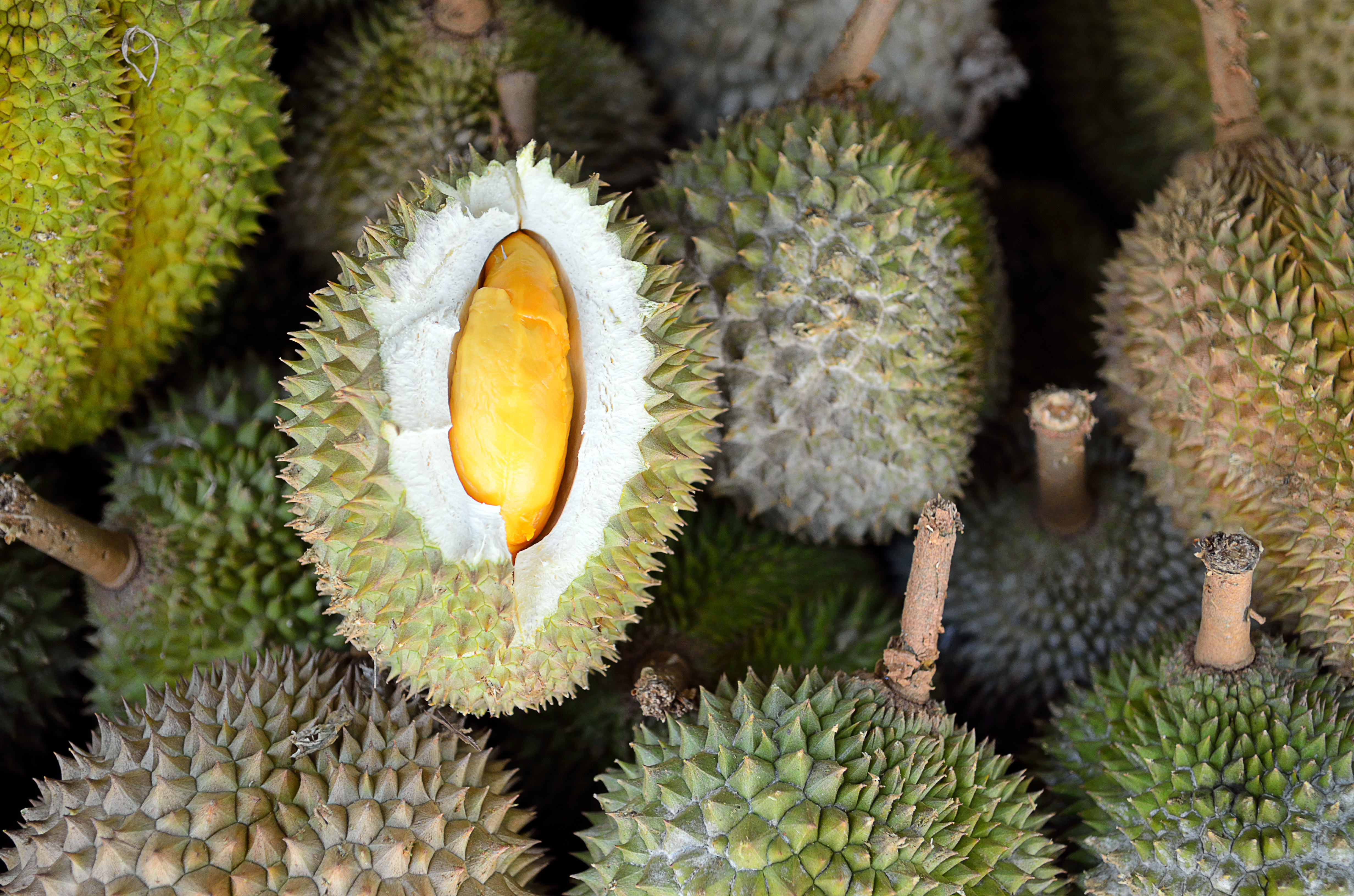 Group of durian in the market...