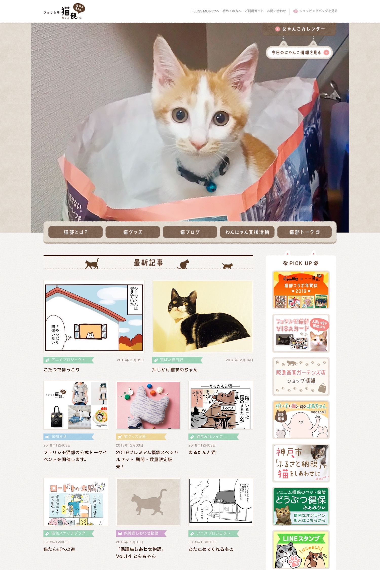 19.Wp 猫部1.JPG