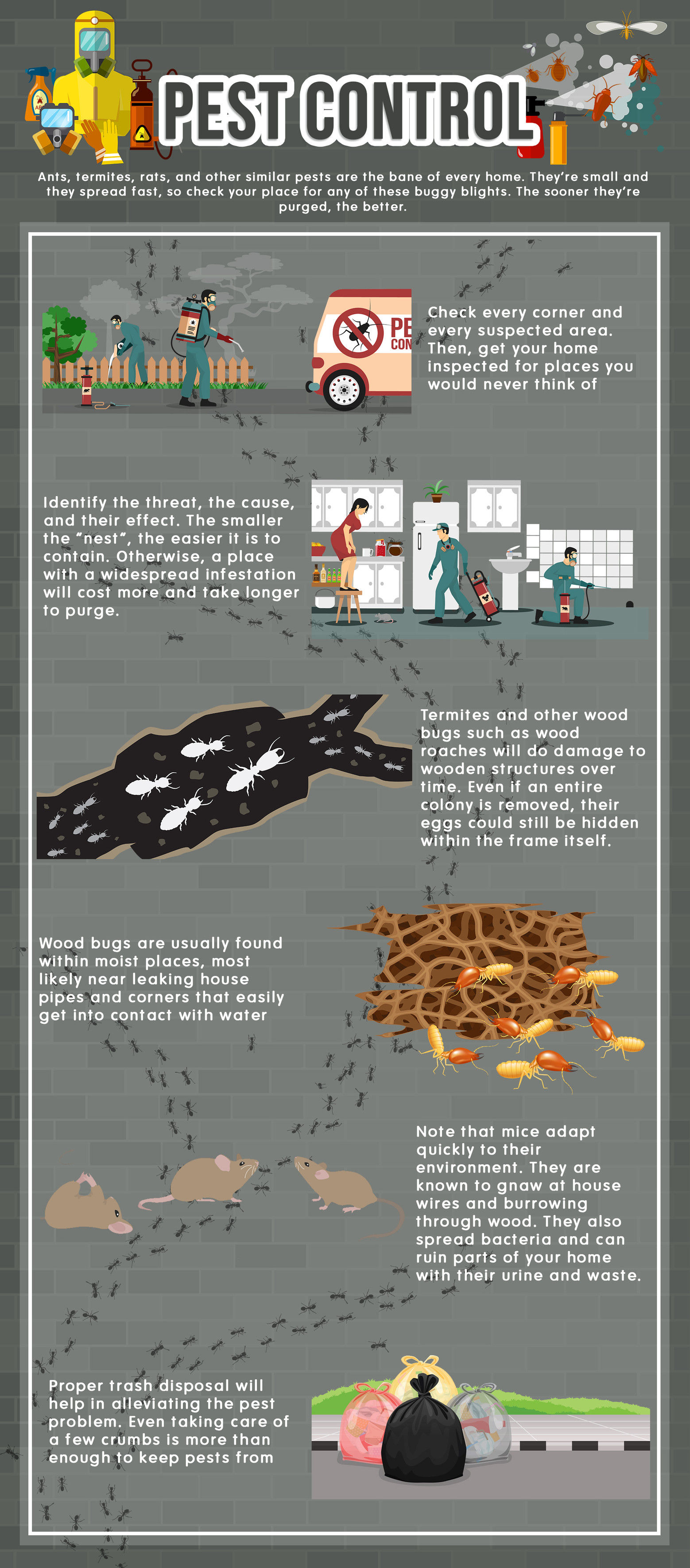Pest Control Infog Revised (3).jpg