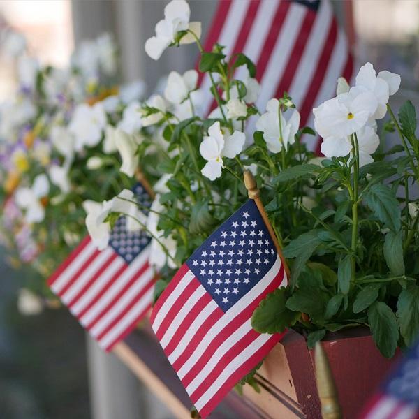 american-flag-in-planter-celebrating-4th-of-july_t20_xvwGEm.jpg