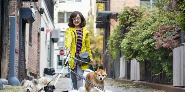Latino woman dog walker