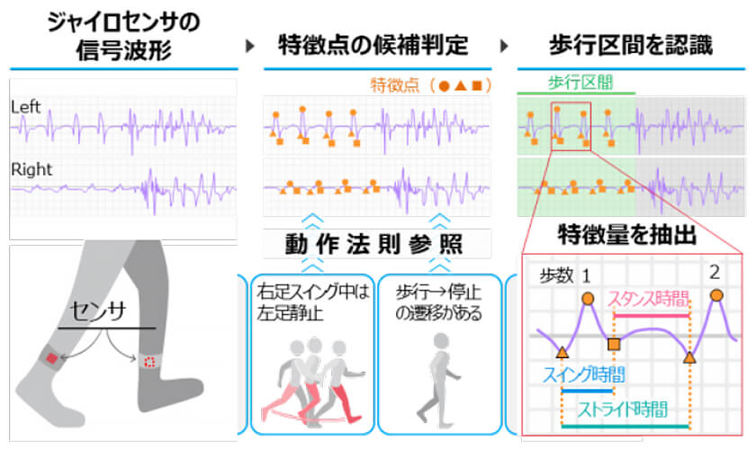 図 : 動作法則に基づき歩行特徴を定量化するイメージ