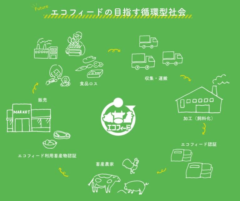 eco_field_01.jpg