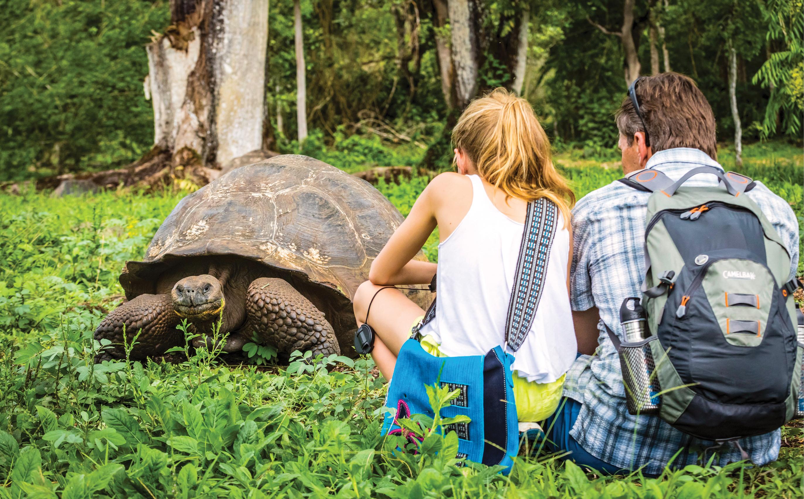 Galapagos_Activity_Blog_6.jpg