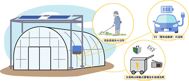 solar_sharing.jpeg