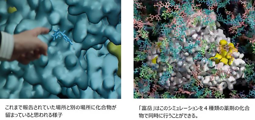 図 : これまで報告されていた場所と別の場所に化合物が留まっていると思われる様子。「富岳」はこのシミュレーションを4種類の薬剤の化合物で同時に行うことができる。