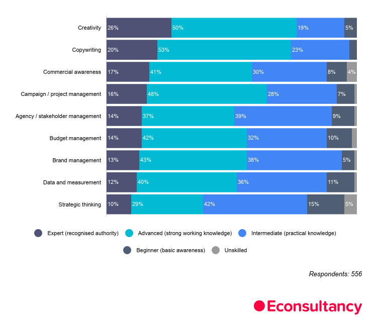 marketing skills infographic.jpg