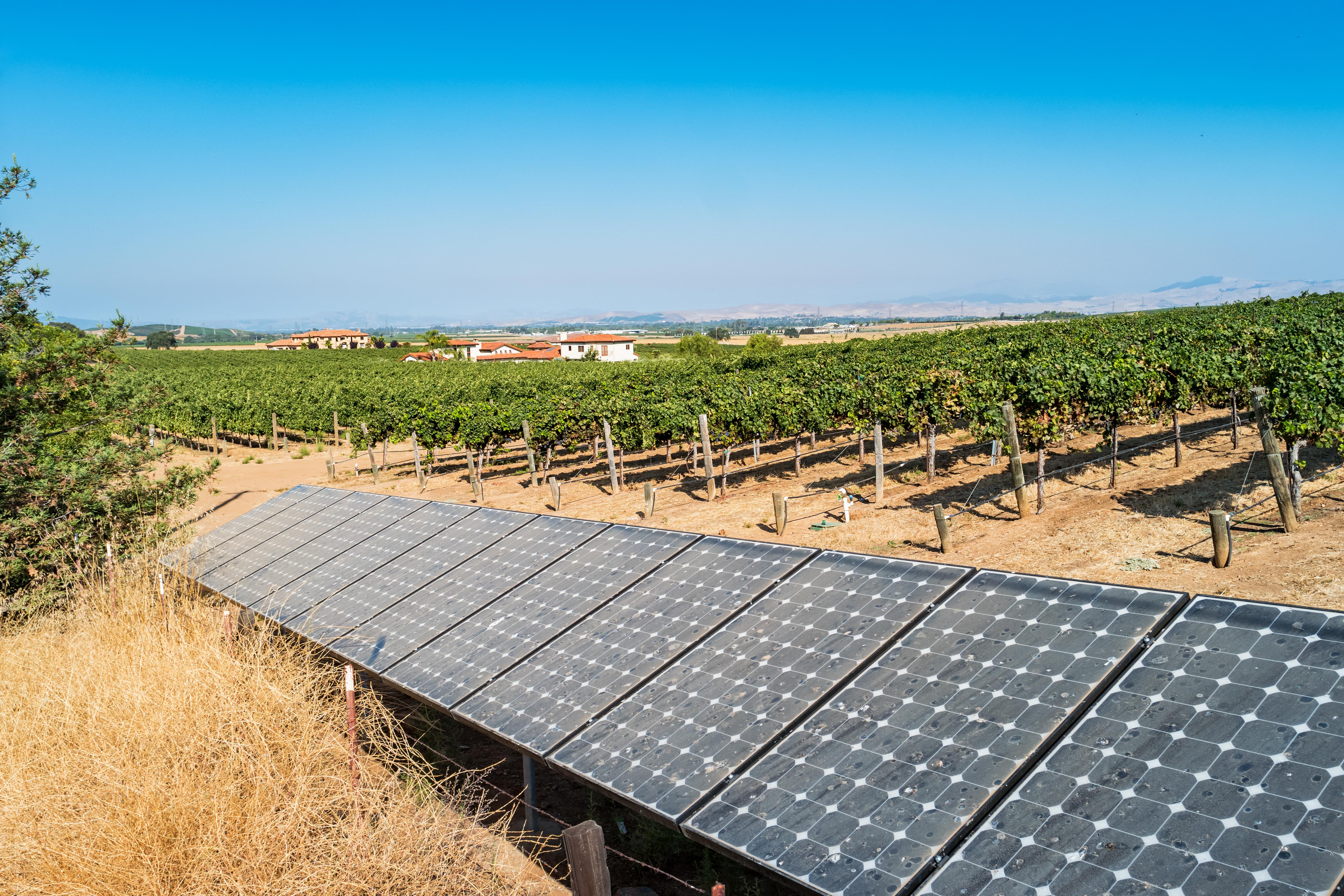 Solar panels at a vineyard in California USA