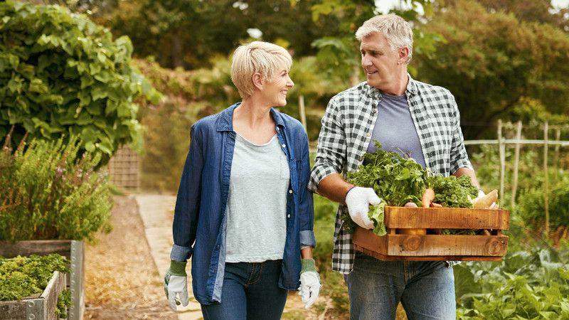 age defined benefit pension schemes