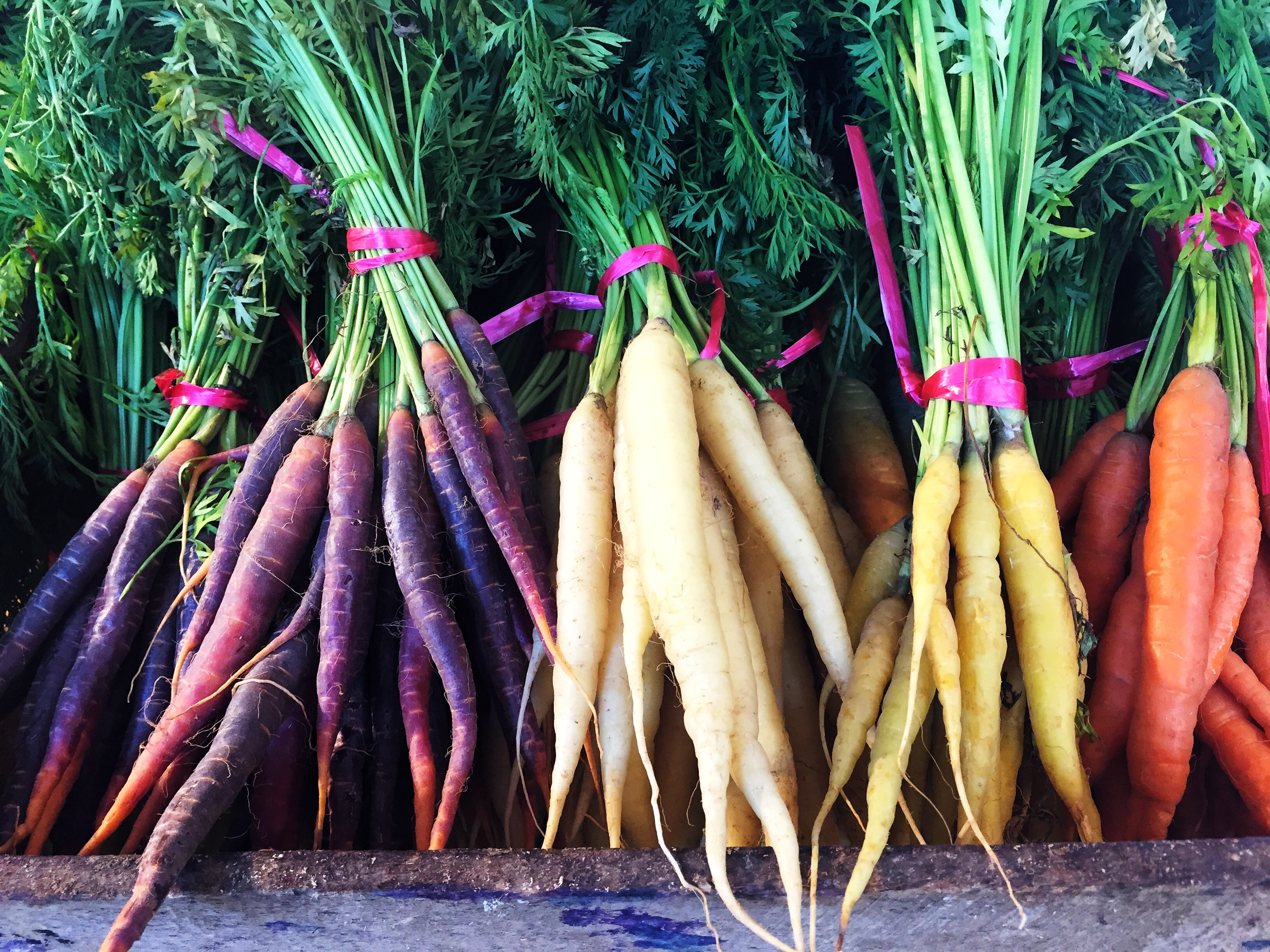 Orange, purple, white, and yellow heritage carrots