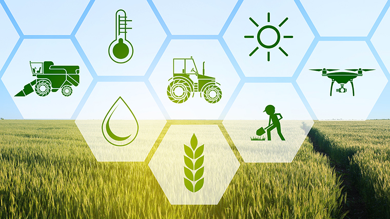 Open Innovation sheds new light on agriculture | OMRON ...