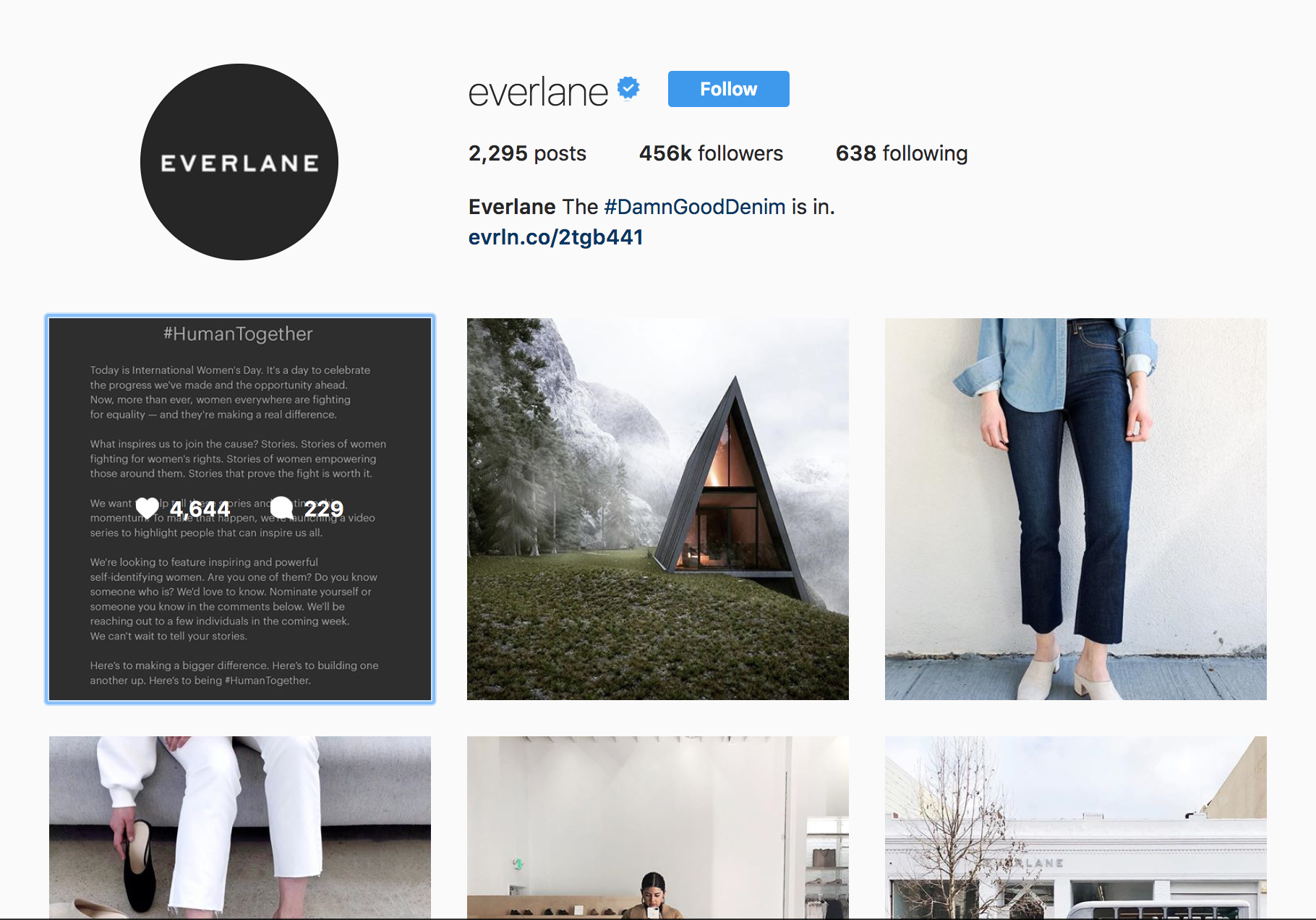 Everlane Instagram.png