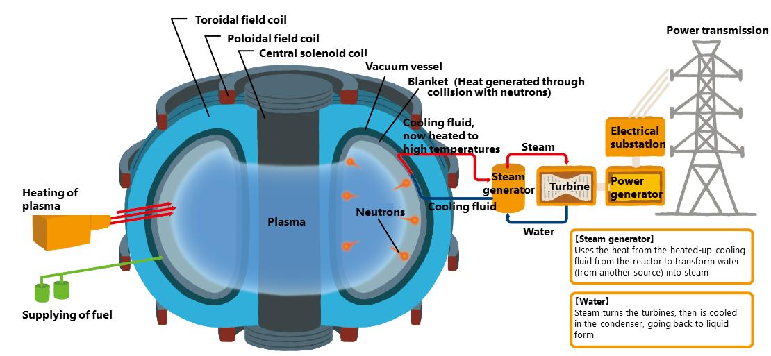 The fusion process