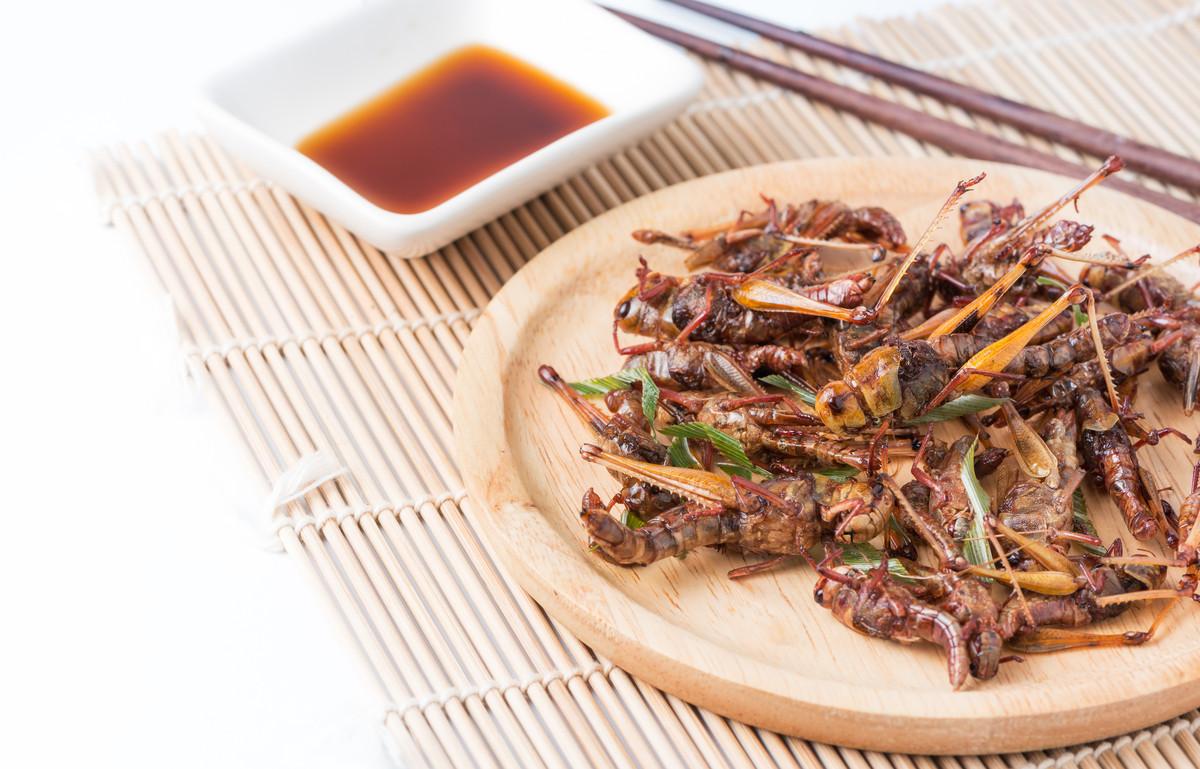 fried grasshoppers.jpeg