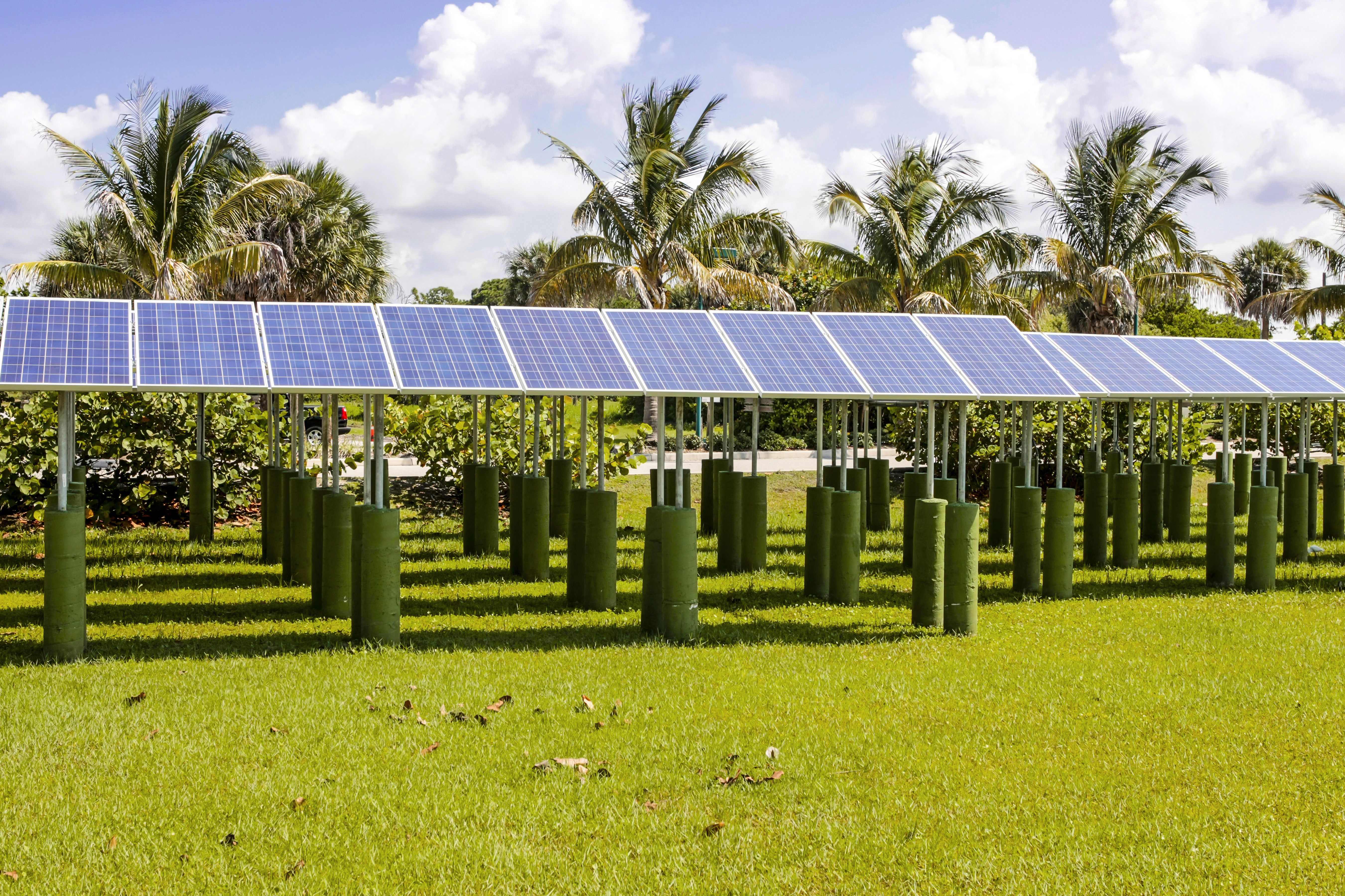 Rows of Solar Panels in Florida