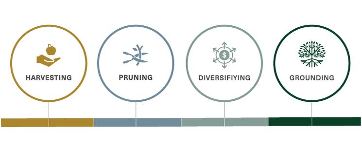Harvesting-Pruning-Diversifiying-Grounding.png
