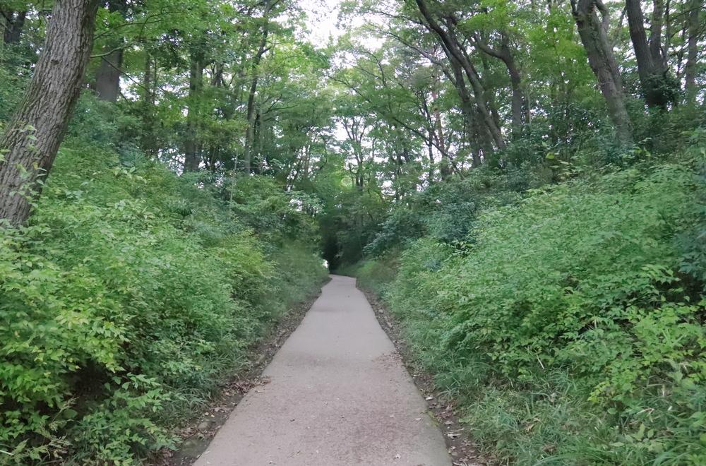 JR武蔵野線沿いに一部だけ残る「旧鎌倉街道」。鎌倉時代の武士たちはこの道を通って鎌倉と群馬方面を行き来した