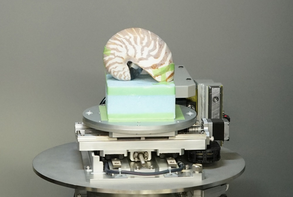 First, take your nautilus and position it