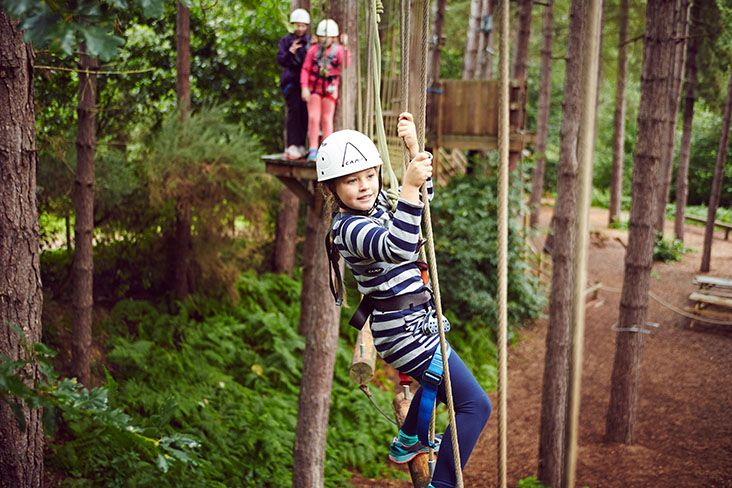 Centre parcs high ropes