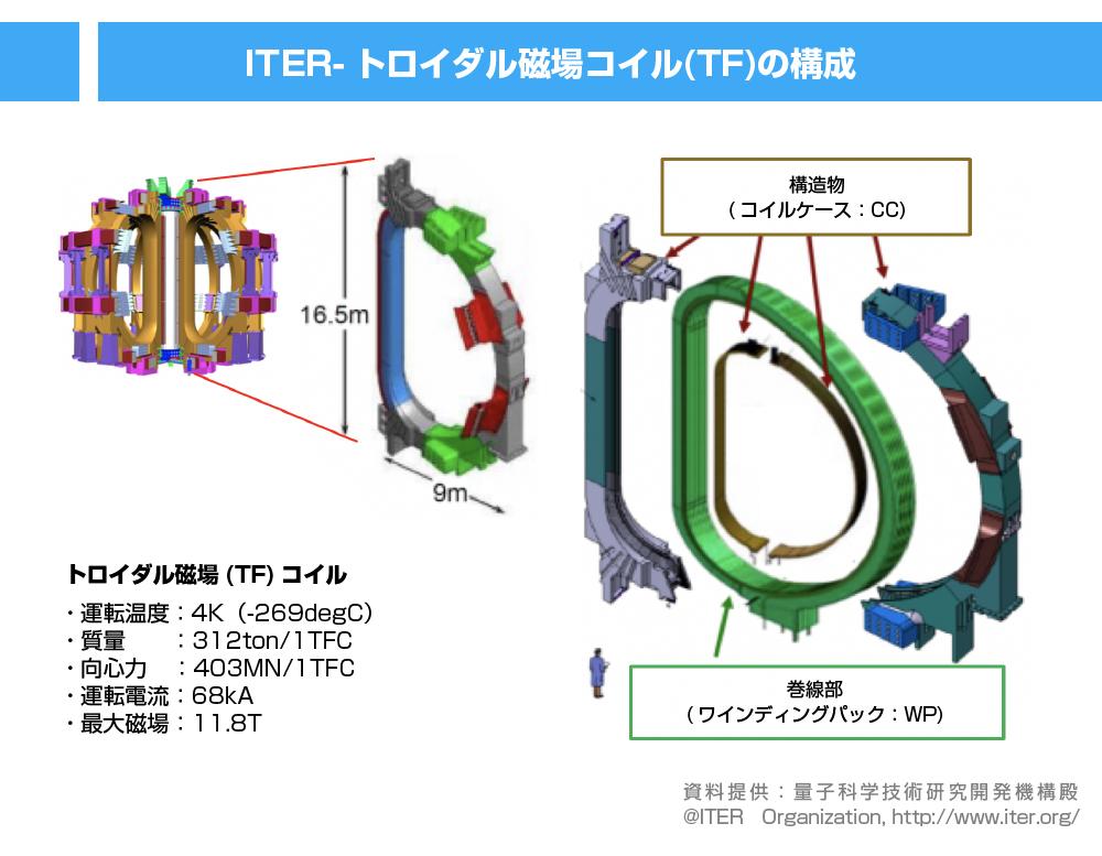TFコイルの構成