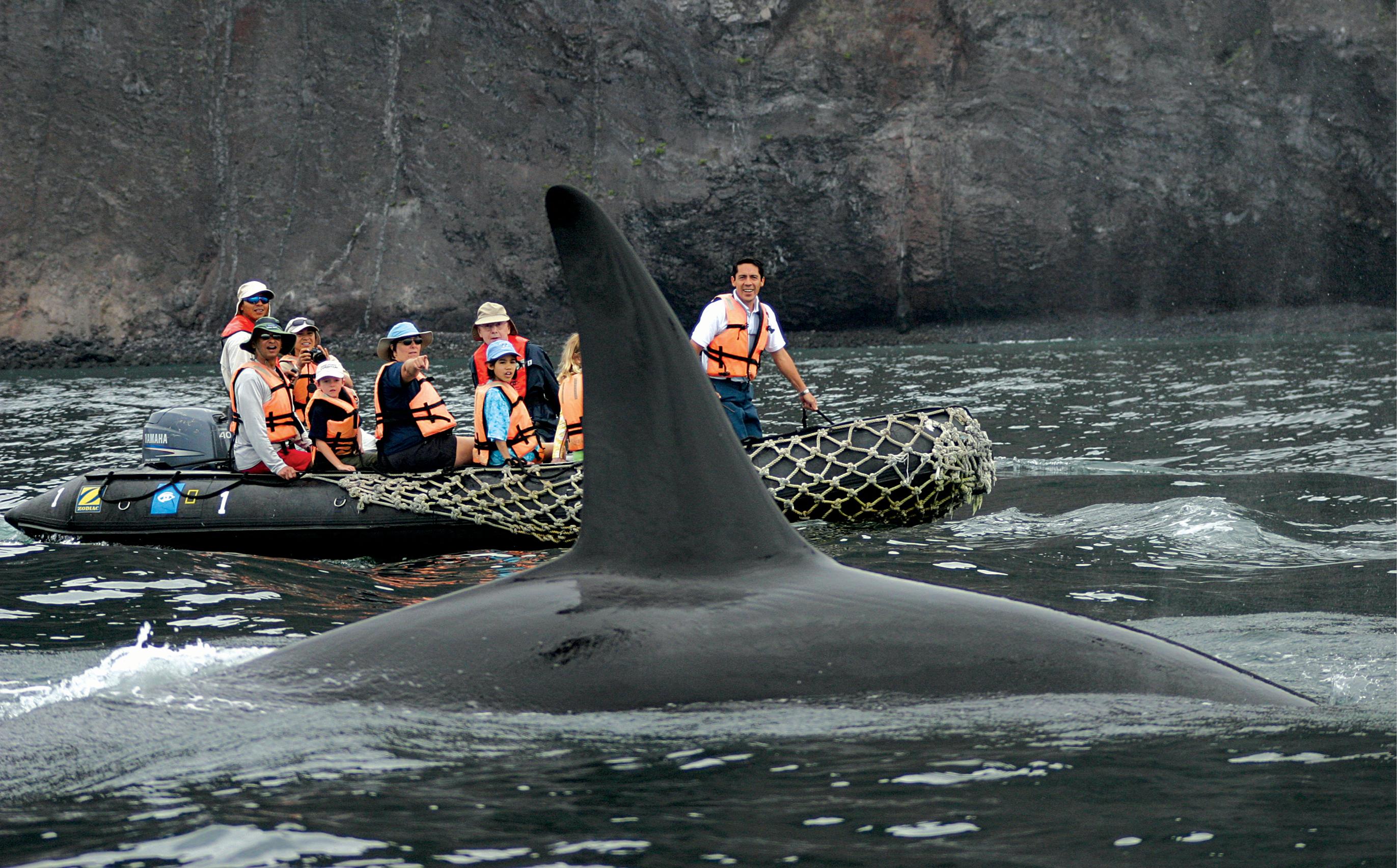Galapagos_Activity_Blog_4.jpg