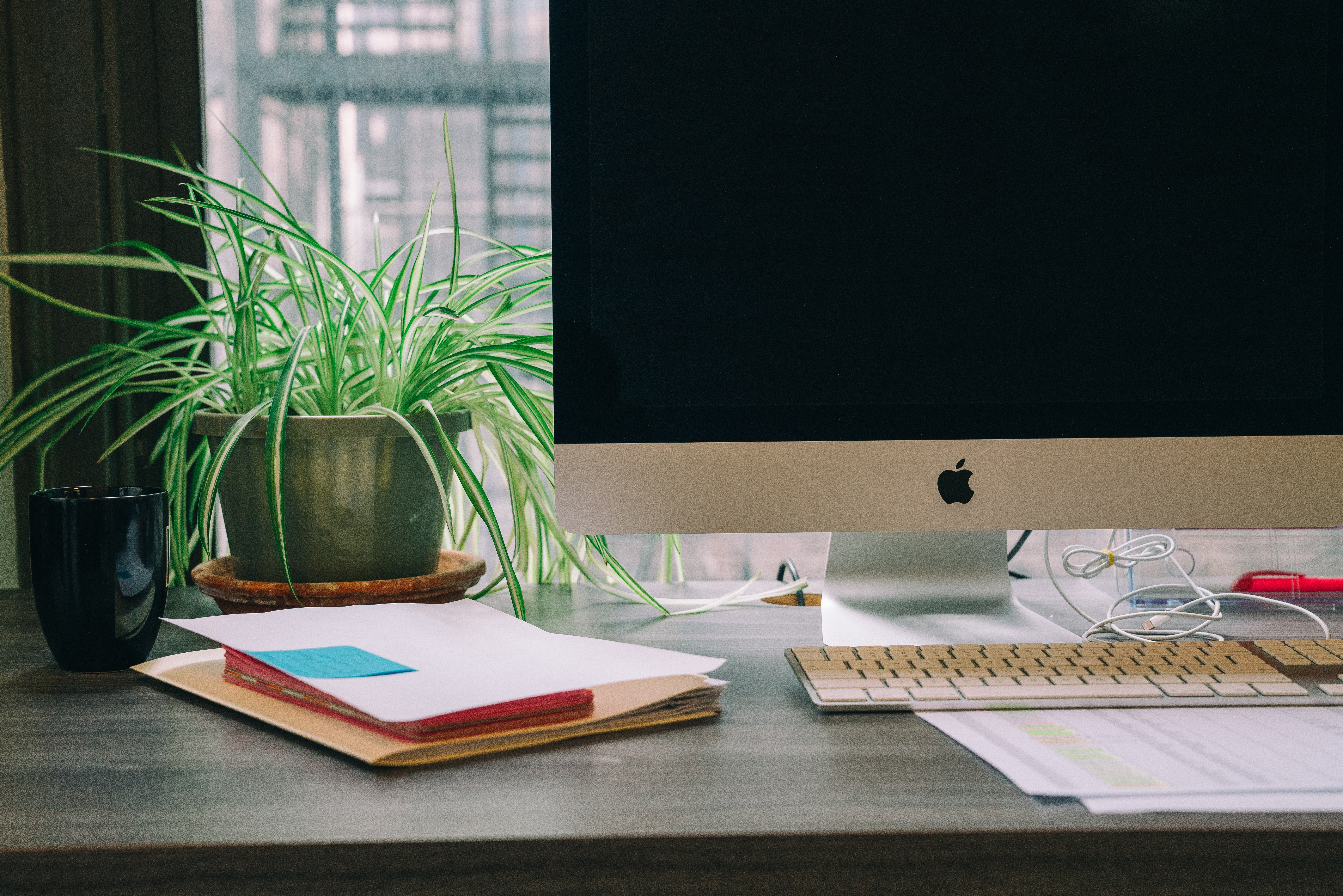 blank monitor and plant on desk