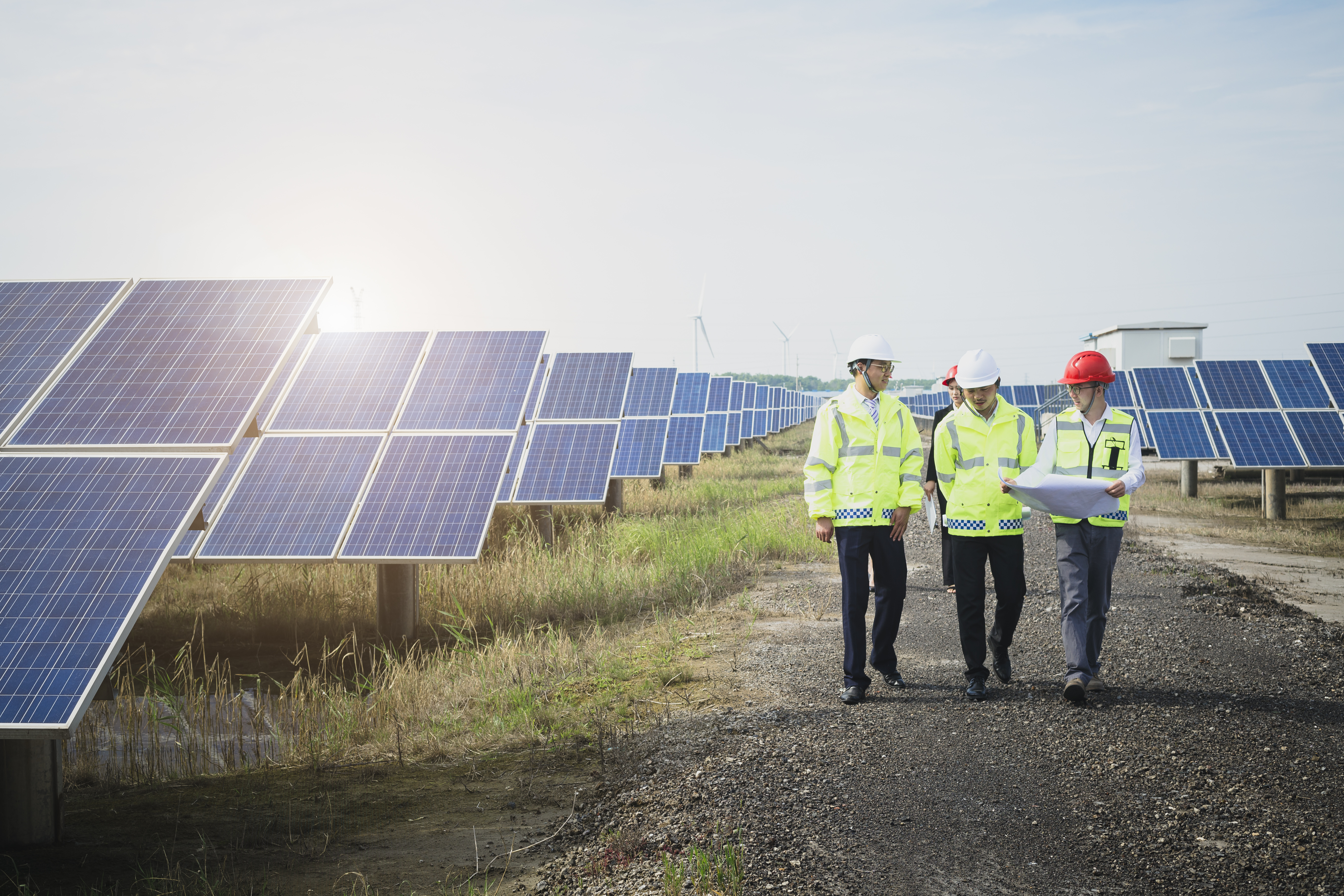 Engineers reconnaissance in green energy base