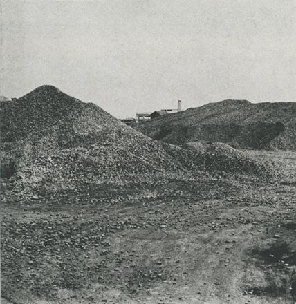 多摩川沿いに集積された砂利の山