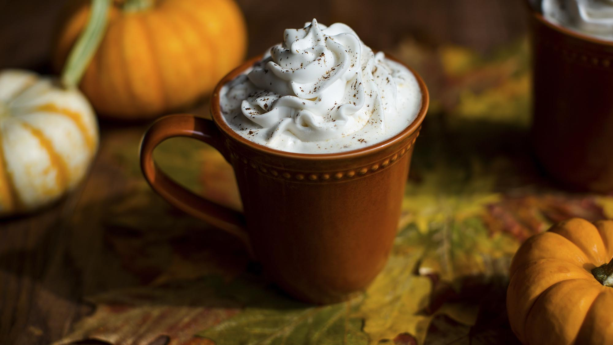 McCormick Slow Cooker Pumpkin Pie Spice Latte
