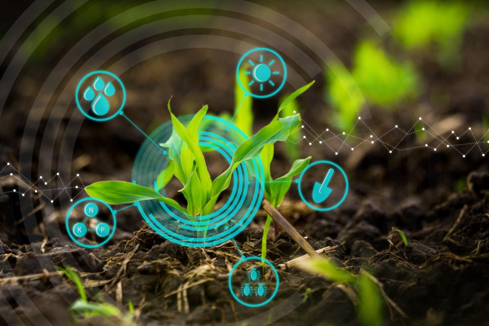 SDGs 農業 1.jpg