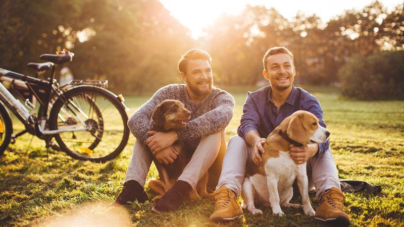 walking-dogs-in-park.jpg