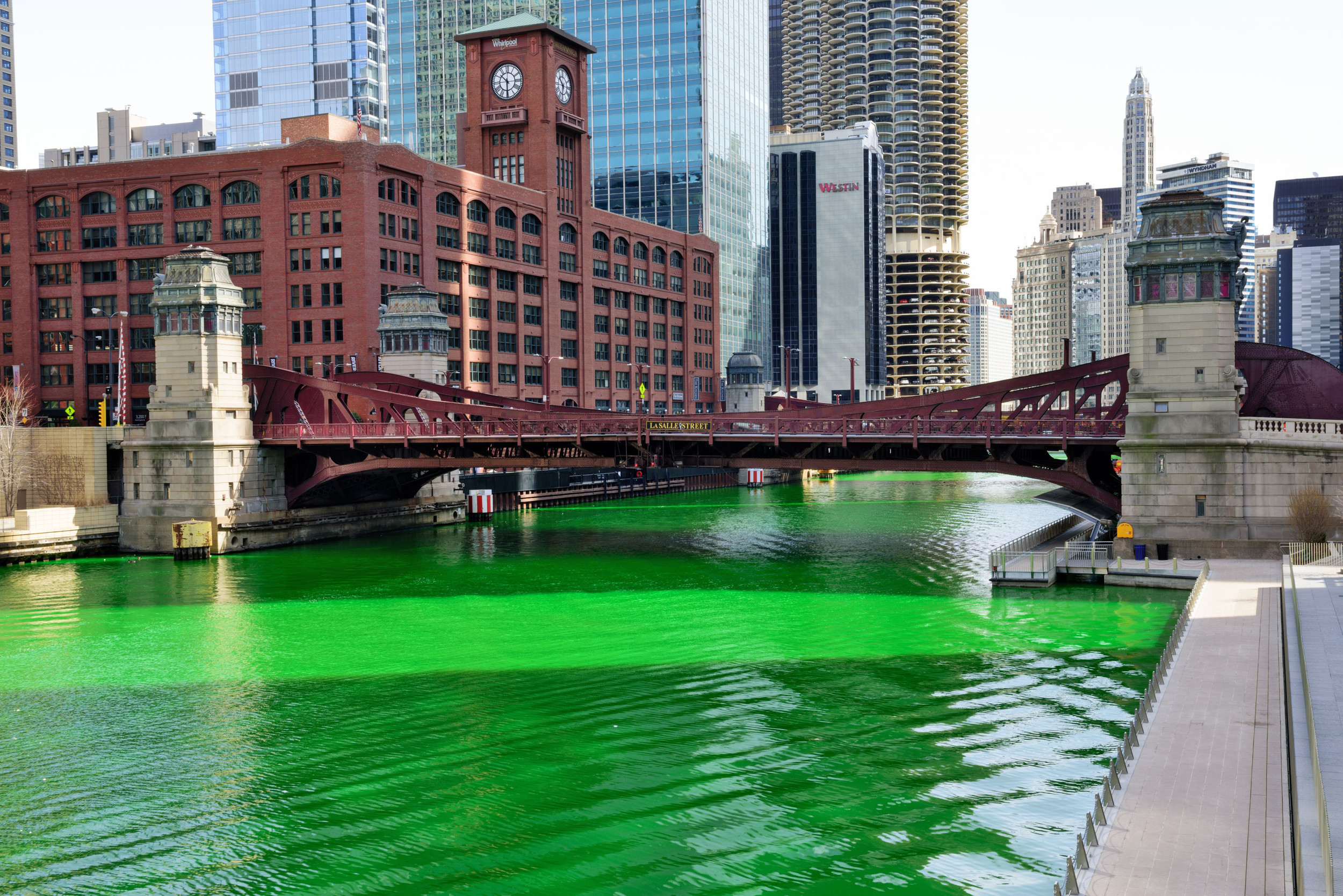 Celebrate St. Patrick's Day like a Chicagoan