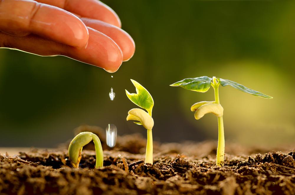SDGs 農業 3.jpg