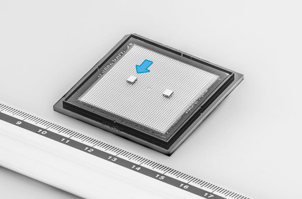 開発した水素センサーチップ(矢印部分)