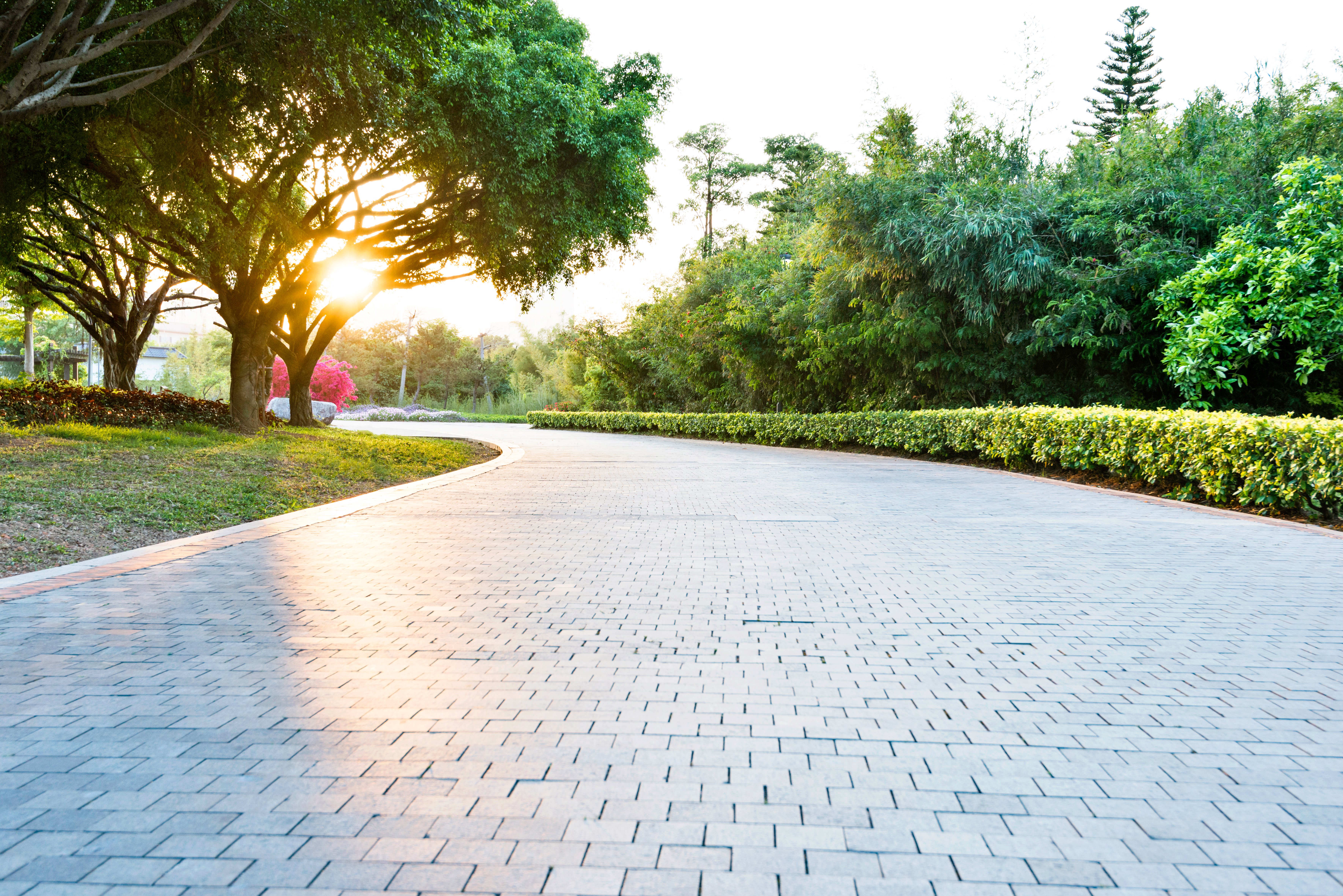 Empty brick road in the park