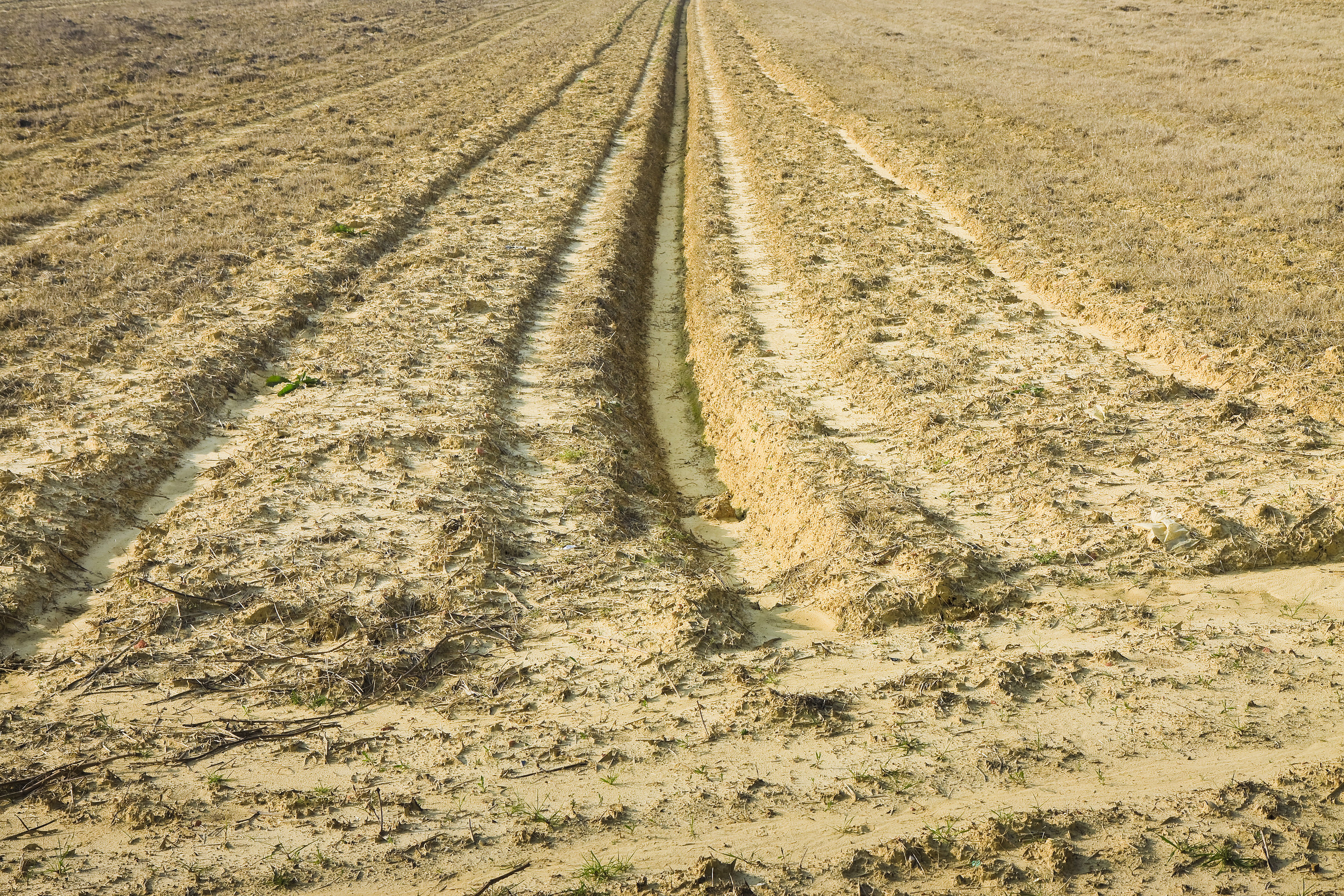 Ditch of rainwater collection in a plowed field - image with copy space