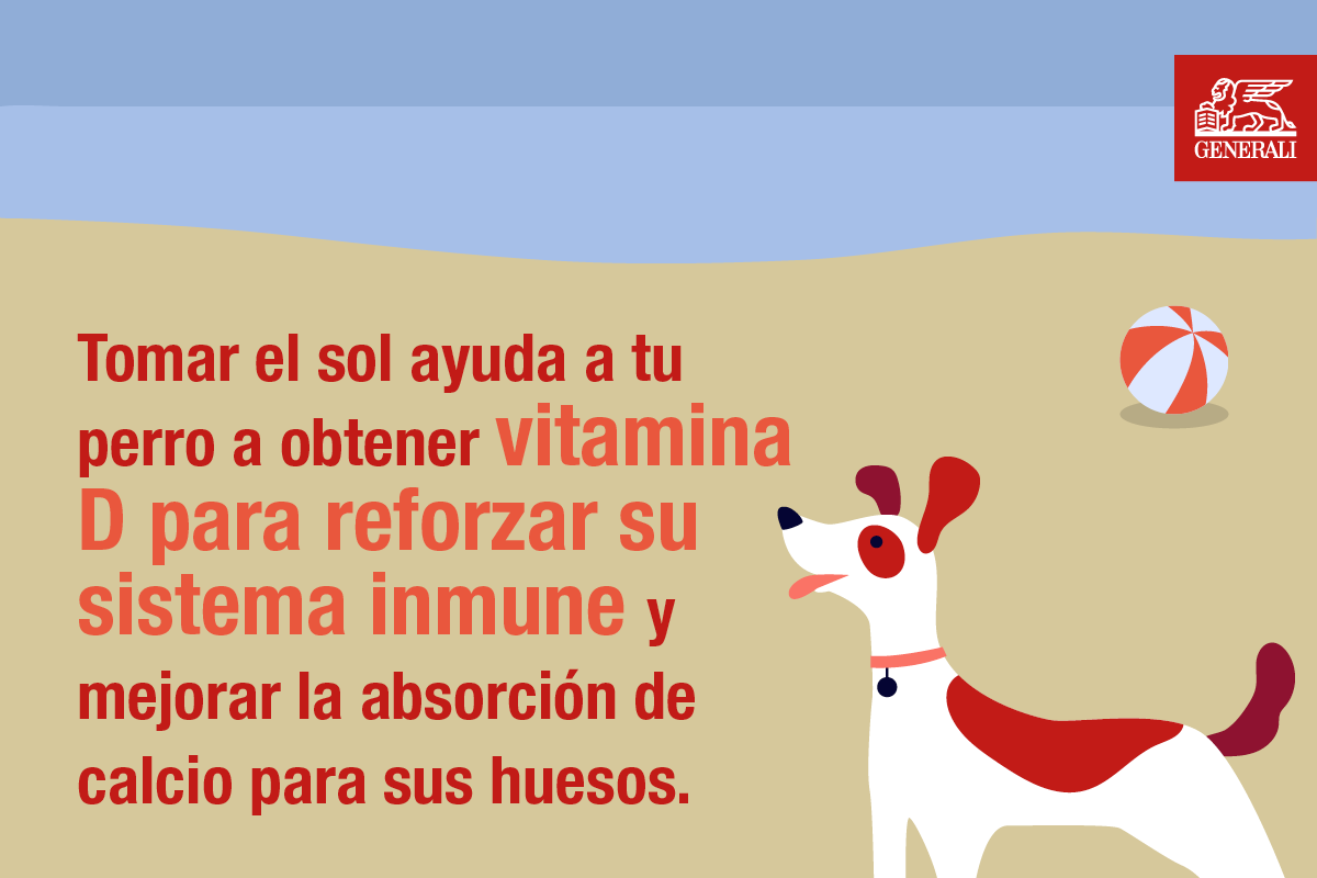 Generali Spain Beaches for dogs 2.png