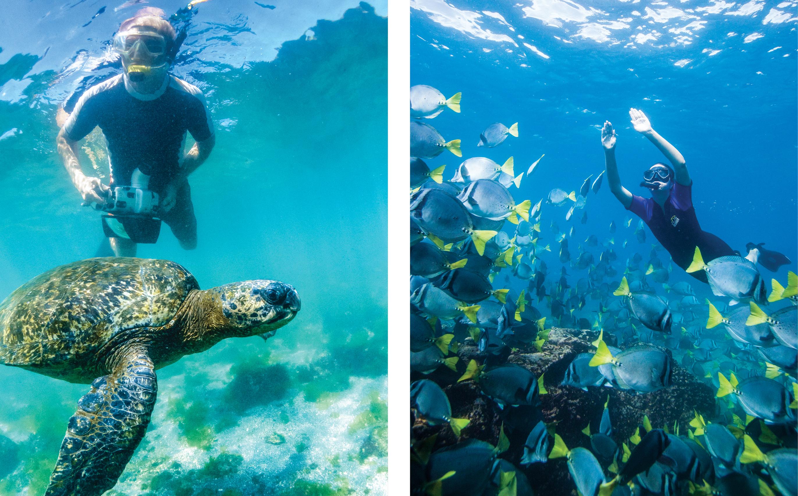 Galapagos_Activity_Blog_2.jpg