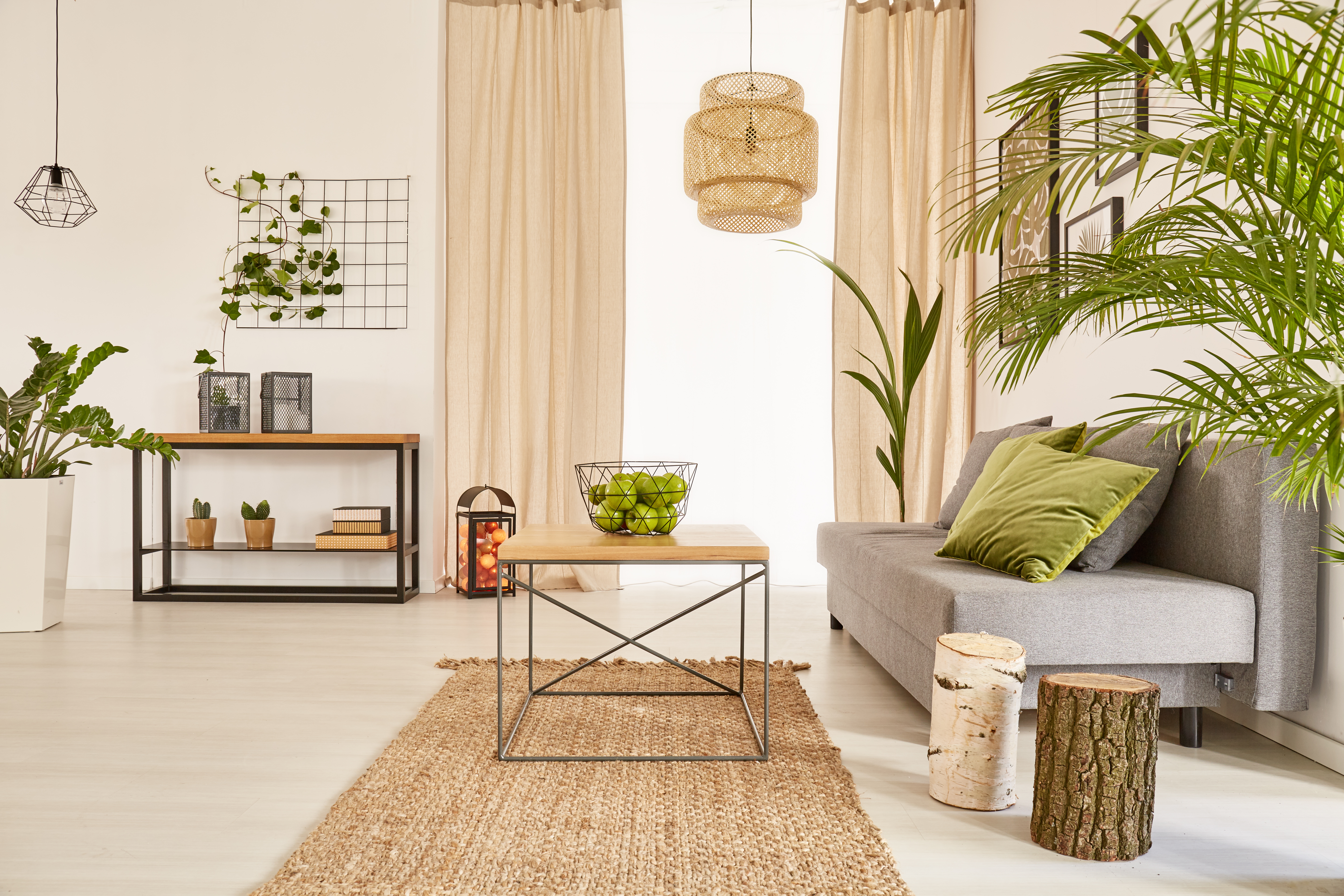 Flat with plants and couch