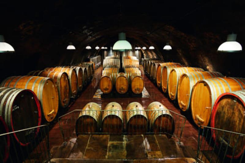 ワイン写真3.jpg